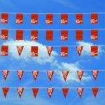 Vlaggenlijnen-papier - Mijnreclamevlag